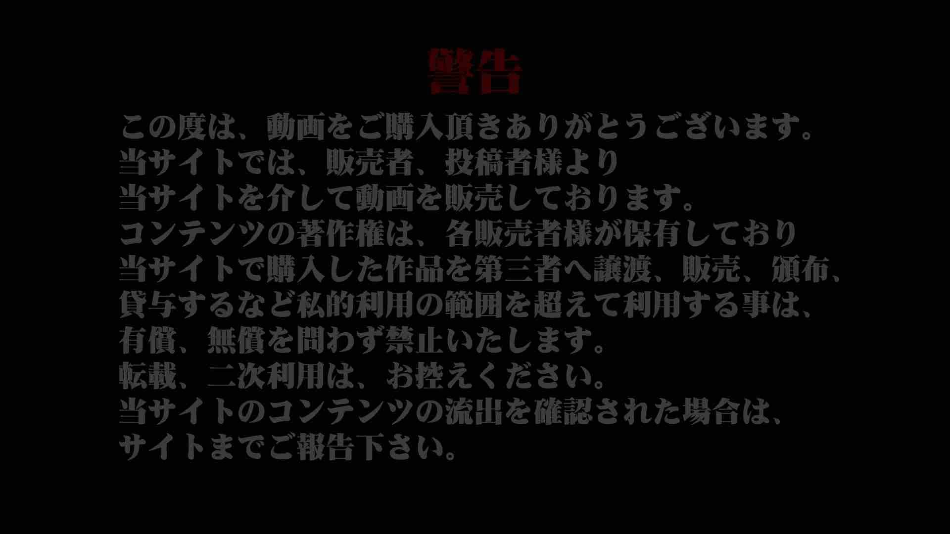 レースクィーントイレ盗撮!Vol.15 便器  76連発